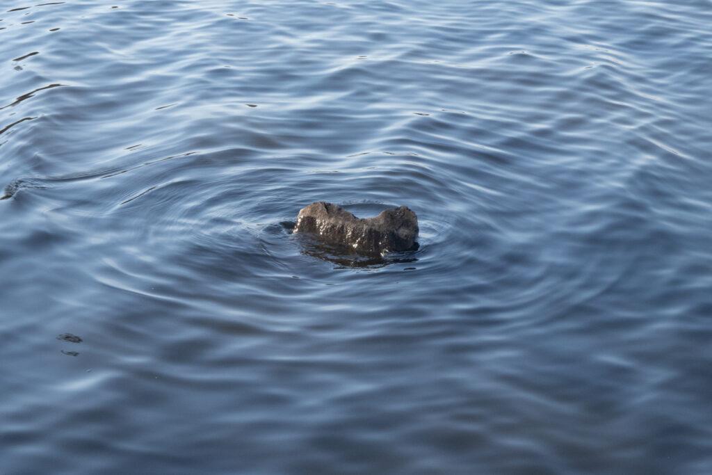 ©Aurélie Marcellak | Une pierre dans la mare à Goriaux